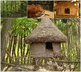 collage with african house and cow