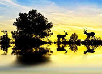 ciervos entre la maleza de la orilla del lago
