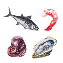 watercolor  sea delicacies set