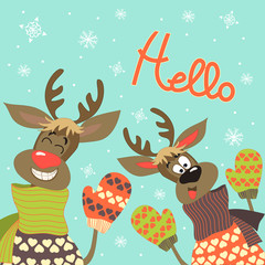 Reindeers say hello