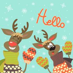 Reindeers say hello