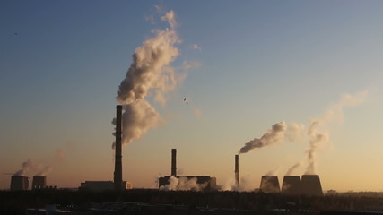 Birds flying in the background of smoking chimneys power plant