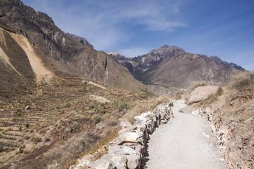 Colca path