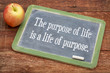 the purpose of life concept - 74101900