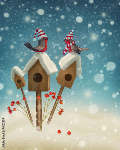 canvas print picture Birds in winter