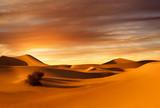 sunset dunes