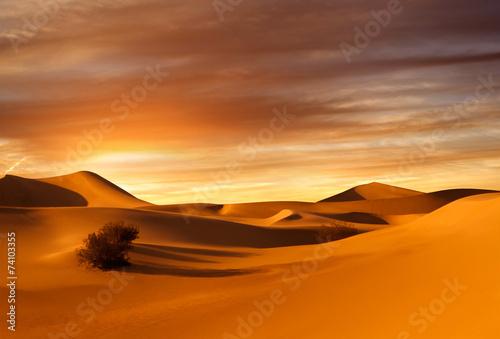 sunset dunes - 74103355