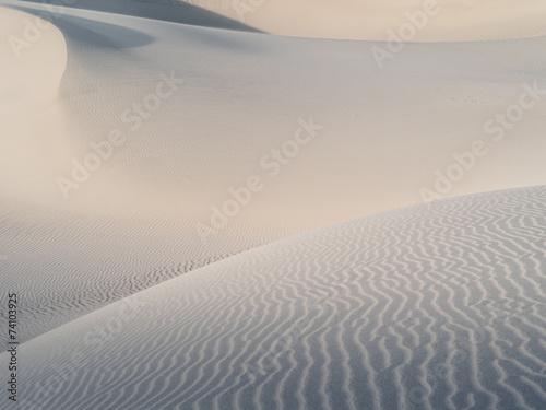 canvas print picture dunes