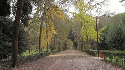 Passeggiata nel parco Firenze