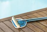 Brush and Leaf Skimmer Beside Swimming Pool