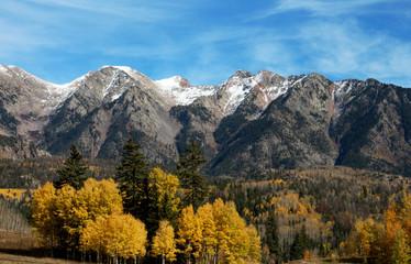 Autumn aspen set against a Colorado mountain