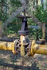 Газовый распределитель за решеткой ограждения в лесу