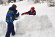 Boys Building a Snow Wall