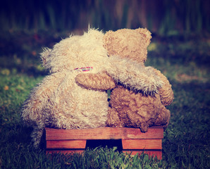 two teddy bears on a bench with arms around each other