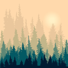 landscape with silhouettes of fir-trees