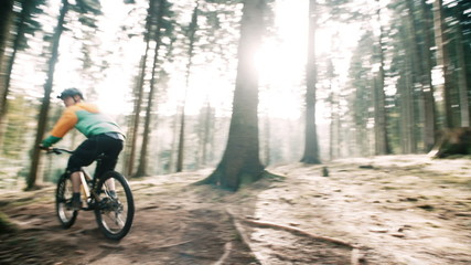 Man on mountain bike rides on track in forest