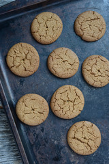 Gingersnap cookies for Christmas on a Baking Pan