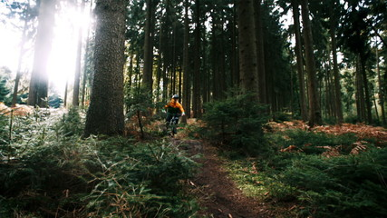Mountain biker rides over ramp in slow motion in woods
