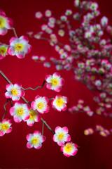 chinese new year cherry blossom
