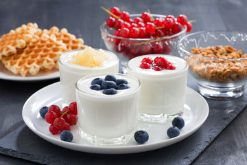 assortment natural yogurt with fresh berries for breakfast