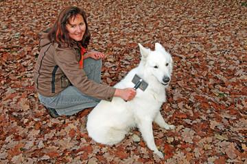 Frau kämmt weißen Schäferhund