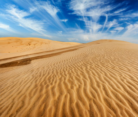 Desert sand dunes on sunrise
