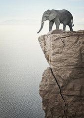 elephant on top
