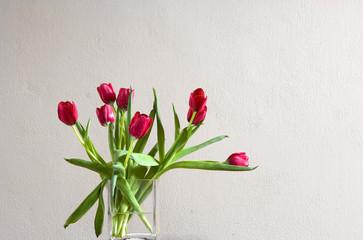 Red tulip in vase