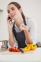 Pretty brunette on the phone while cooking