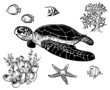 Vector icon set with sea animals - 74128950