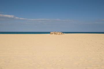 Beach at Corralejo national park on Fuerteventura island