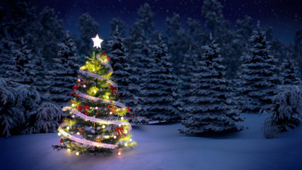 Christmas tree in snow covered pine woods at night