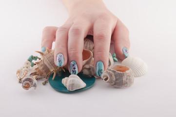 Nail, Spa and Shells