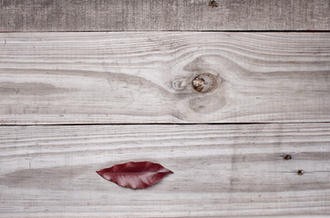 Surrealistic lips on wooden background.