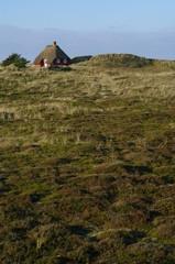 Reetdachhaus in Dänemarks Jütland 10