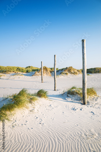 canvas print picture coastal dune Sankt Peter-Ording