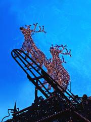 Renntier Rudolf - Lichtspiel - Weihnachten