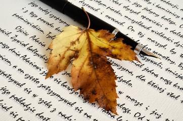 Jesienny pisarz