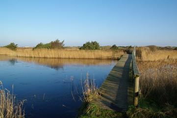 Holzbrücke in Dänemarks Jütland