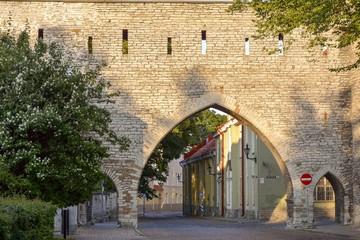 Rua e muralha da cidade de Tallinn