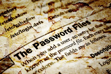 The password files