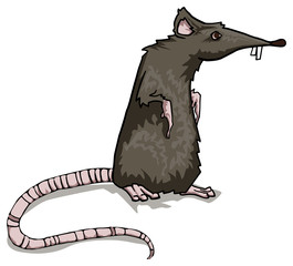 Scary, black rat character