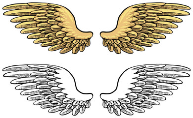 Hand drawn, set of wings