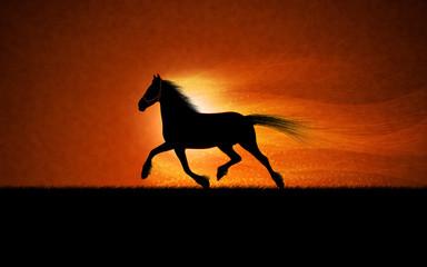 Horse by Billard
