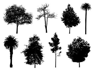Set of tree silhouettes.