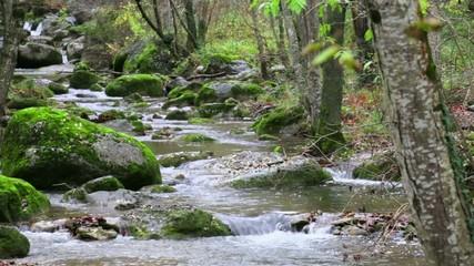 Mediterranean River Cascades in Autumn