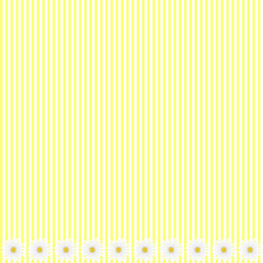 Yellow stripe background with daisy flowers, vector image