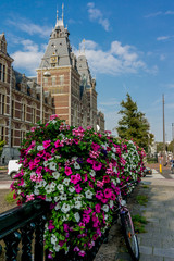Flowers outside the Rijksmuseum in Amsterdam