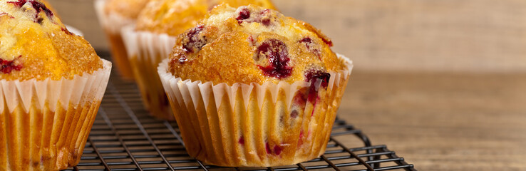 Freshly baked Cranberry muffins. Selective focus.