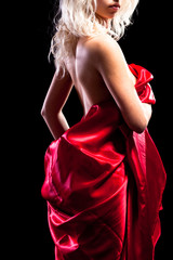 Back of the woman in red. isolated on black background